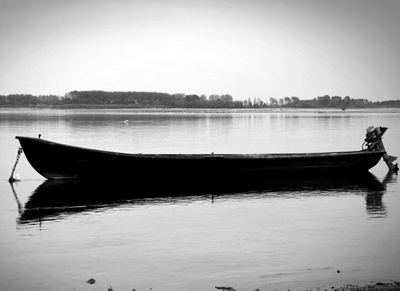 Фургон и рибарска лодка изгоряха на брега на Дунав