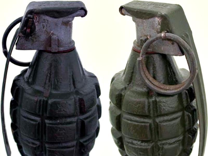 Военни от Долна Митрополия обезвредиха граната