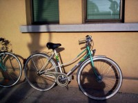Заловиха 37-годишен, откраднал колело в Брест