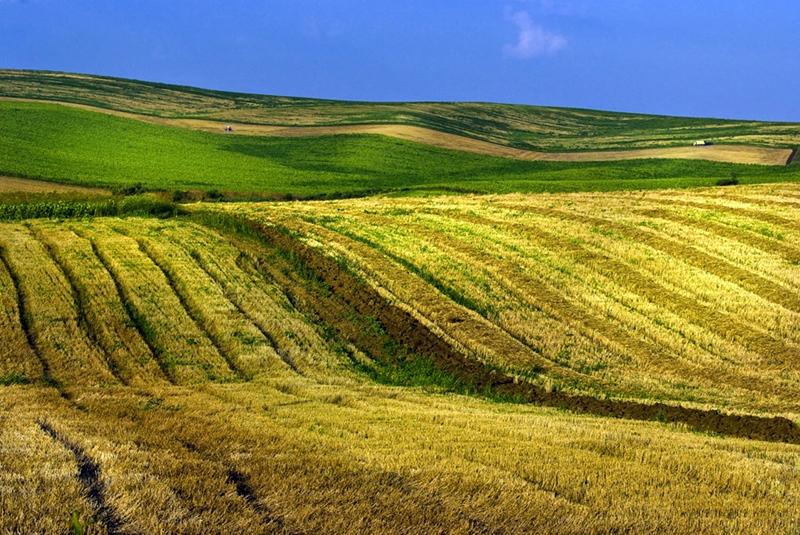 949 лв. за декар е средната цена на земеделската земя в област Плевен