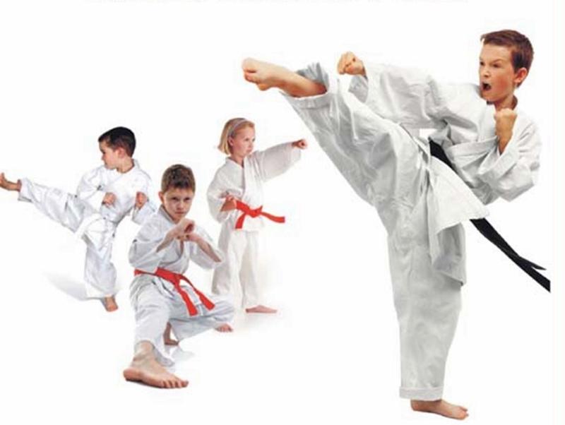Червен бряг ще е домакин на национален турнир по карате