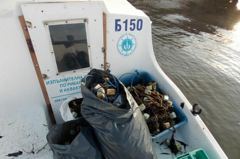 Забранени уреди за улов на есетрови риби иззе ИАРА – Плевен