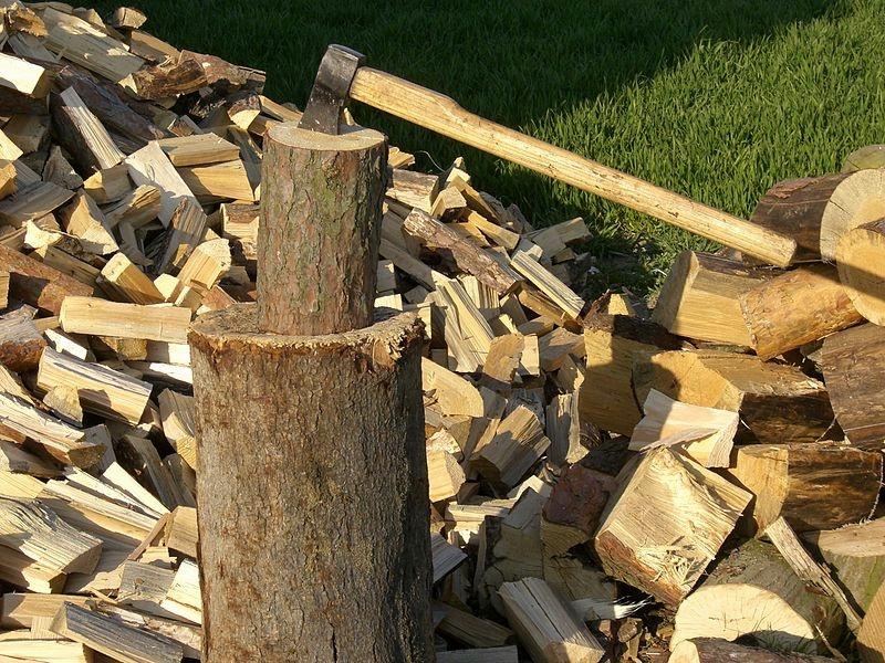 Няколко каруци с дърва без маркировка спипаха в района на Червен бряг