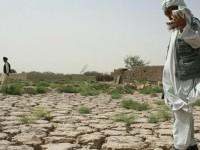 17 юни – Световен ден за борба със сушата и настъпването на пустините
