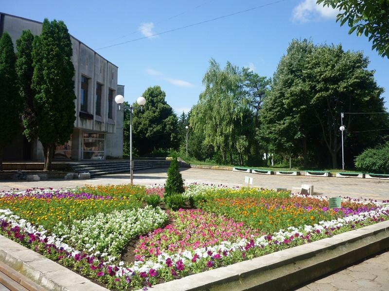 В цветна градина се превърна центърът на Долни Дъбник