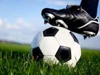 Плевенският футбол празнува днес своята 99-годишнина