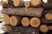 Спипаха 44-годишен с незаконно отсечени дърва в Асеновци