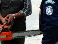 Спипаха двама, извършвали незаконна сеч в Лавров парк