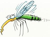 В община Никопол ще пръскат срещу комари от 13 до 16 юни