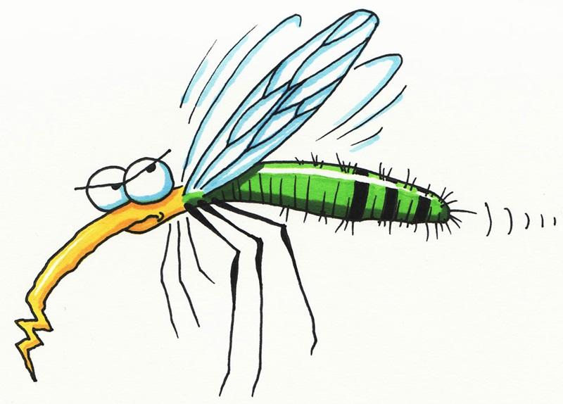 На 2 и 3 май ще третират срещу комари в община Никопол