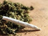 В Плевен задържаха двама, продавали наркотици