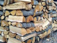 Хванаха шофьор без книжка да превозва дърва без документи край Телиш