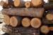 В Рупци спряха 30-годишен да превозва дърва без документи в нерегистриран автомобил