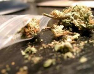 Задържаха за 24-часа младеж от Плевен заради марихуана