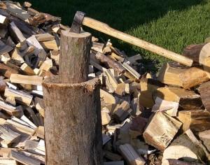 Спецоперация срещу незаконната сеч на дърва е проведена в област Плевен
