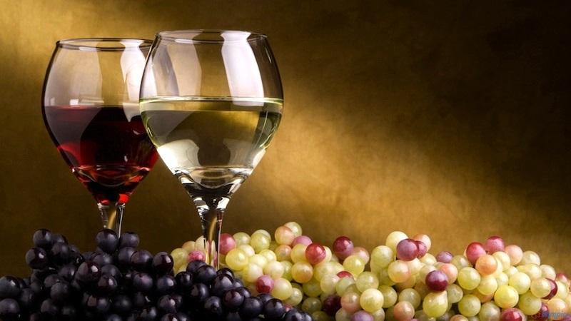 Община Кнежа организира конкурс за най-добро домашно вино