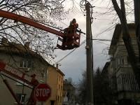 Ограничава се движението по част отулица в Плевенднес заради кастрене на дървета