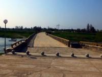 Днес ще засадят 140 дръвчета край Историческия мост при Ясен