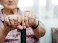 НОИ с информационна кампания и в Плевен по повод Международния ден на възрастните хора