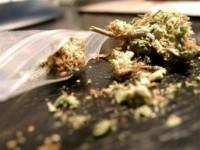 Арест за плевенчанин, при обиск у него е открита марихуана