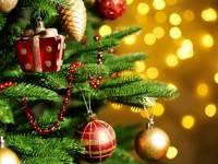 Запалват светлинките на коледната елха на Пордим на 12 декември