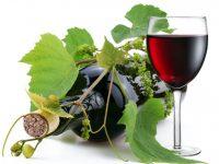 Конкурс за млади бели и червени вина организират в Байкал