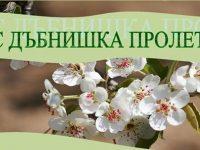 """Конкурс """"Мис Дъбнишка пролет"""" 2017 организират в Долни Дъбник"""