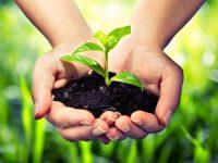 С поредица прояви в Плевен ще бъде отбелязан Световният ден на околната среда – 5 юни