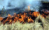 Огнеборците гасиха пожари в сухи треви в Червен бряг и Искър