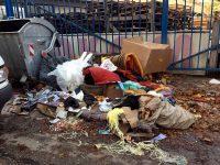 Възмутена плевенчанка: Как може хората да си причиняват това и да живеем в сметище?