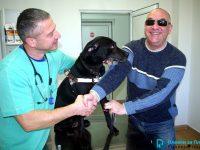 Ветеринарна клиника ИДА-ВЕТ – Плевен вече 7 години полага всеотдайни грижи за кучето-водач Жара