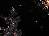 """Днес ще грейнат светлините на елхата в НУ """"Патриарх Евтимий"""" – Плевен"""