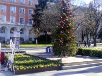 Слънчево време с максимална температура от 14 градуса в първия ден на новата година в Плевен!