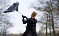 Жълт код за бурен вятър е в сила днес в област Плевен