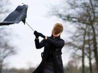Жълт код за силен вятър е в сила за днес в област Плевен