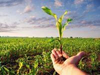 16 януари – Ден на растителната защита