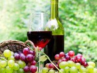 Най-хубавото домашно вино ще избират на Трифон Зарезан в село Аспарухово