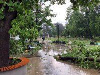 Вижте първи снимки на пораженията след бурята в централната част на Плевен!