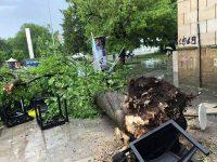 Цяла нощ екипи на РДПБЗН – Плевен са отстранявали щетите от бурята