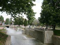 Засаждат устойчиви на градските условия дървета в Плевен, но поетапно