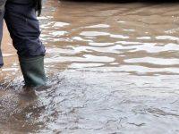 В община Долна Митрополия е обявено частично бедствено положение