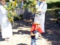 Празник на билките в село Брестовец