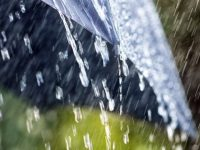 Жълт код за порои и гръмотевични бури утре в област Плевен