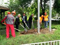 Със символична първа копка започнаха строителните дейности по проекта за ремонт на 9 учебни заведения в Плевен