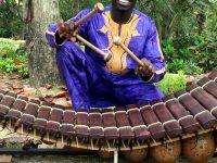 Виртуоз от Буркина Фасо ще открие есенния джаз фест в Плевен