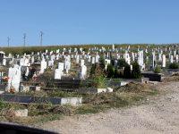 Ремонт на основни алеи и обредните домове в гробищни паркове възлага Община Плевен