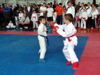 """Международен турнир по карате """"Купа Плевен"""" ще се проведе тази събота"""