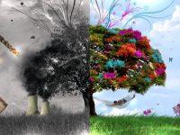 6 ноември – Международен ден за защита на околната среда
