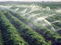 Изграждат дъждовална система в землището на село Реселец