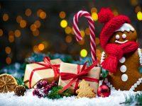 """Коледен благотворителен базар и концерт подготвят от ОУ """"Д-р Петър Берон"""" – Плевен"""